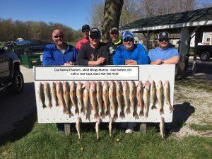 Lake Erie charter fishing for walleye
